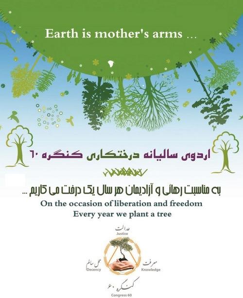 Image result for درخت کاری کنگره 60