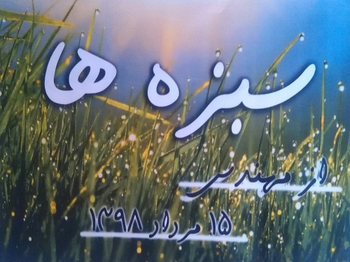 Image result for خلاصه سی دی سبزه ها