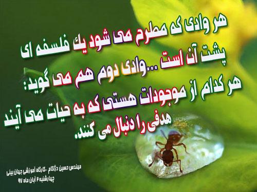 Image result for هیچ مخلوقی جهت بیهودگی